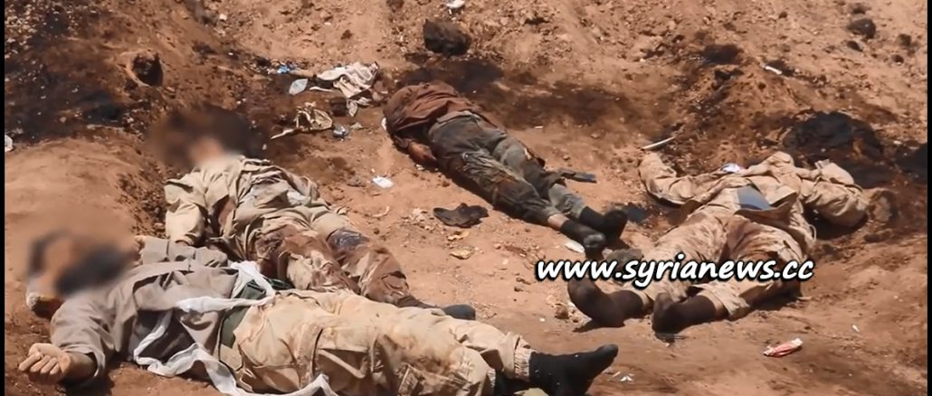 image-Graphic: SAA Kills Dozens of ISIS Terrorists in Mayadeen Countryside