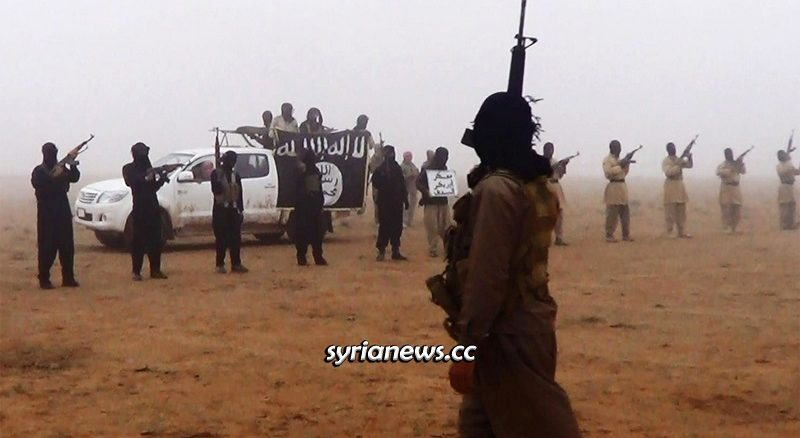 ISIS re-emerging in the Syrian Plains - Desert